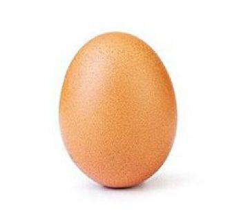 Farm Fresh Egg-Per Dozen